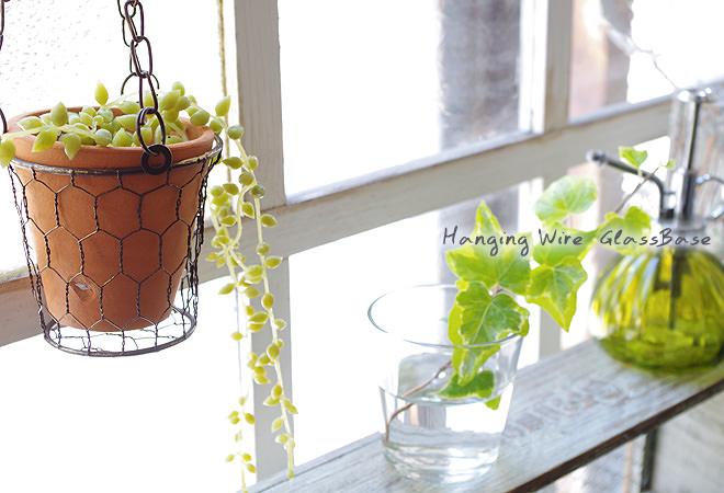Hanging Wire  GlassBase