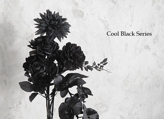 クールブラック