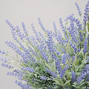 Lavender Bunch L